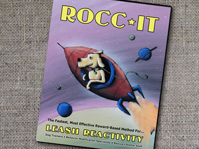 DVD Cover Design and Illustration : Rocc-It